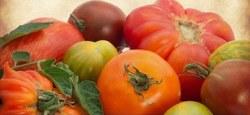 8ème fête de la tomate et des légumes oubliés