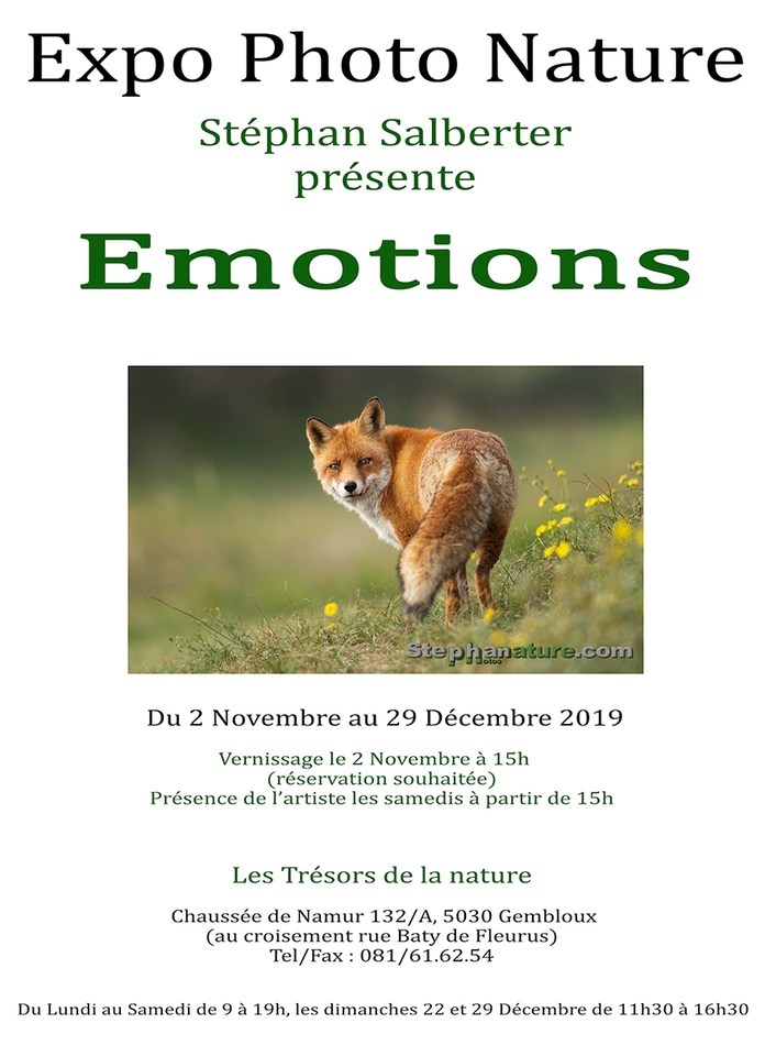 Emotions expo