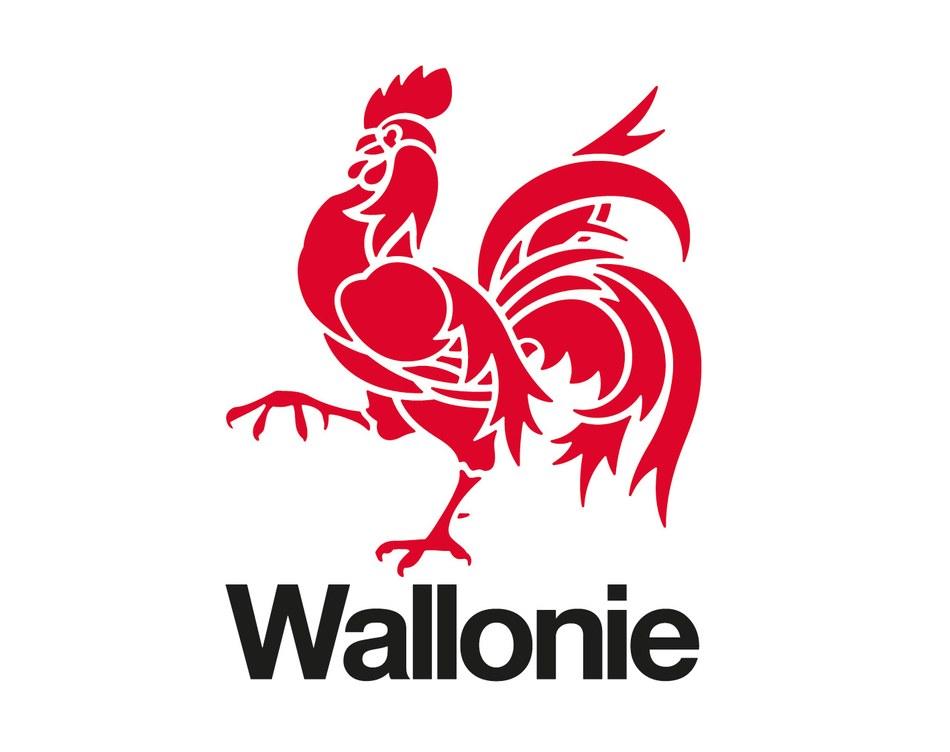 wallonie v