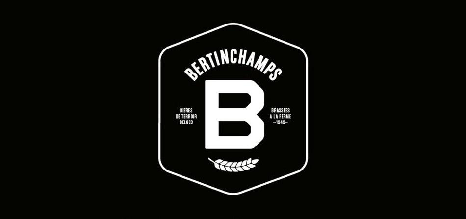 BERTIN web temp V1