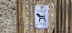 Déjections canines : attention aux amendes